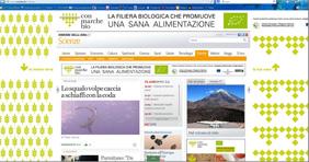 Corriere.it  monografico+skin, luglio 2013
